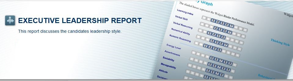 executive leadership report